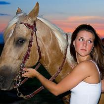 private Pferdehaftpflicht